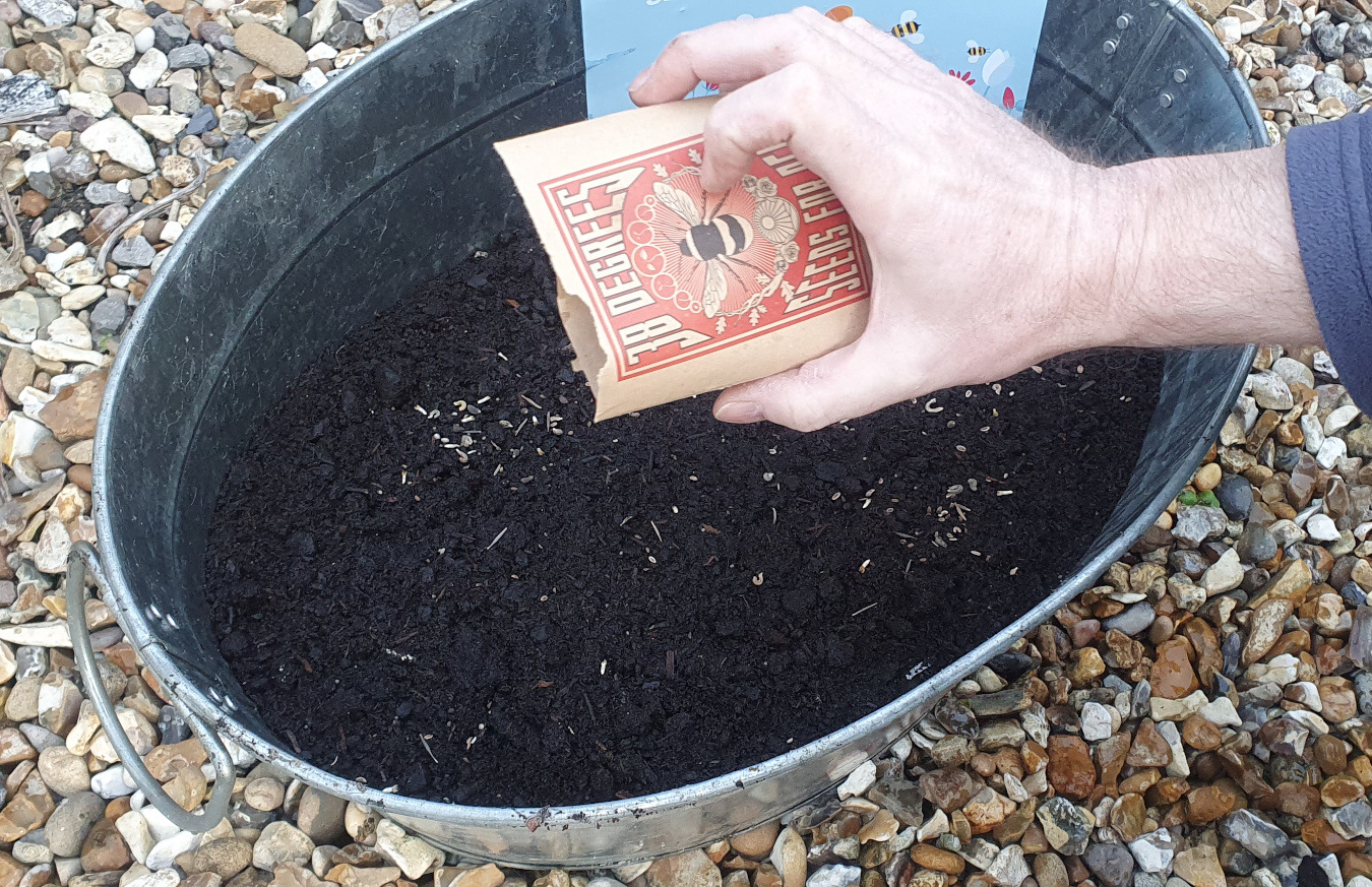 Scattering seeds into a planter